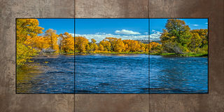 Fall on the Colorado Triptych