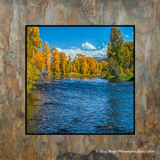 Fall on the Colorado