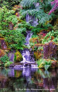 Japanese Garden Waterfall III Vertical