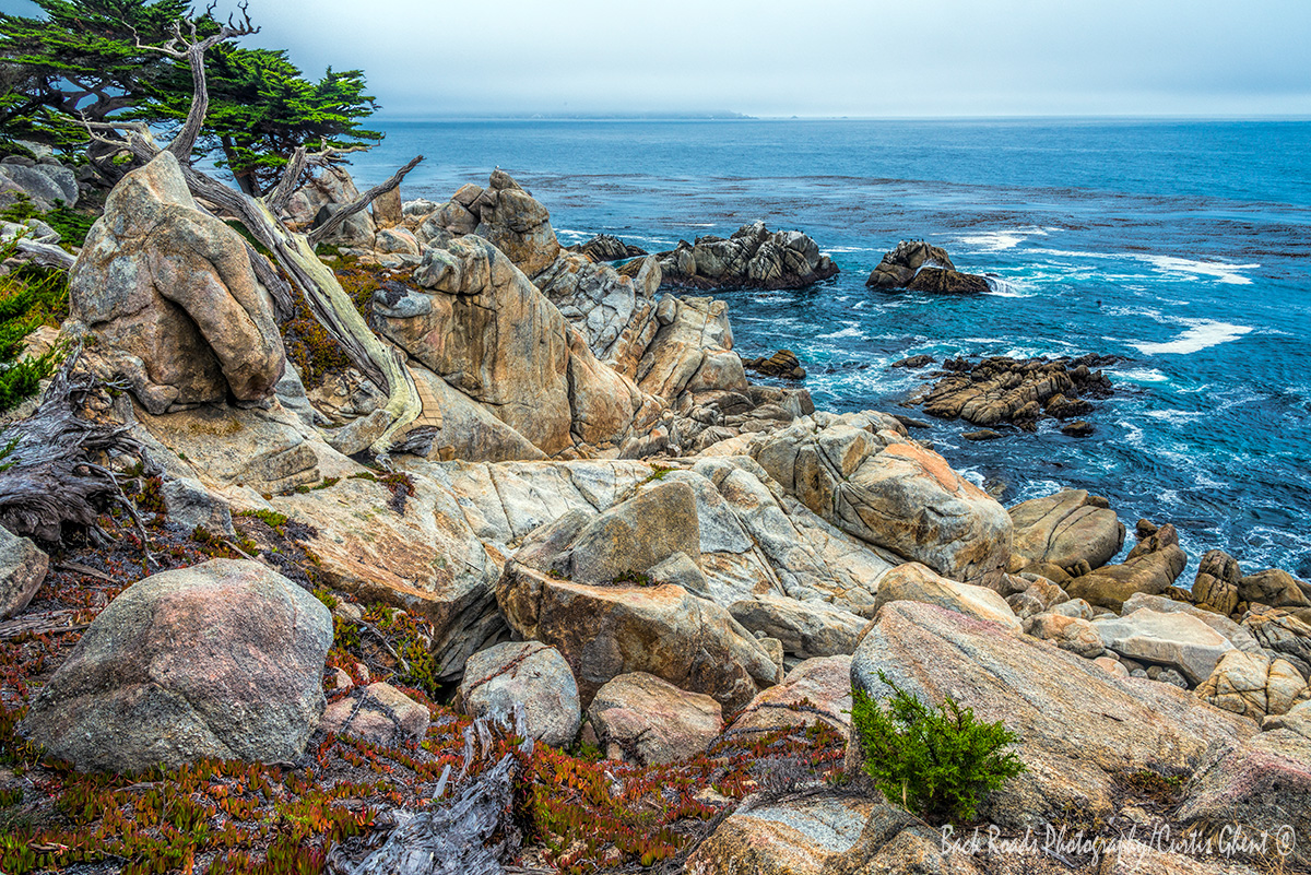 Just north of Carmel by the Sea is 17 mile drive which also skirts famed Pebble Beach.